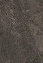 0173 bronze black lille